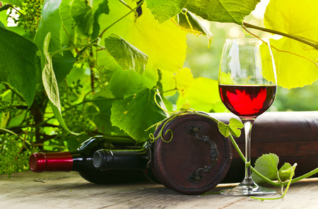 pink  leaf: bottle and glass with red wine in vineyard.