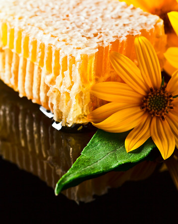 reflexive: sweet honeycomb and yellow flowers on black reflexive background