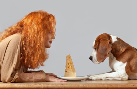 breackfast: cheese and redhead womanl with cute beagle