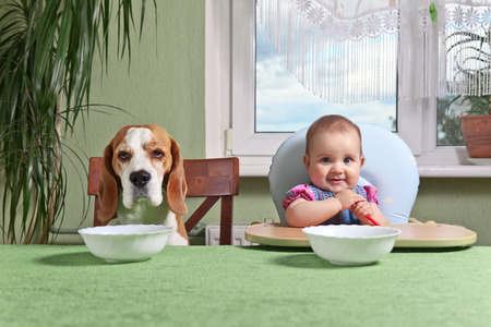 little girl with a dog waiting for dinner