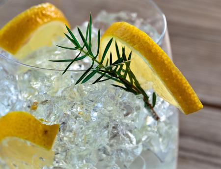 enebro: Ginebra con limón, hielo y la rama de enebro Foto de archivo