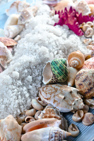 crystallized: Sea salt with shells and starfish on a wooden table