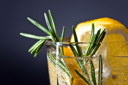 alcoholic drink: alcoholic drink with tonic, lemon and rosemary