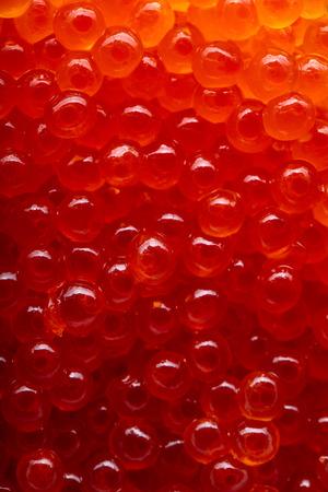 Red caviar mackro shot , focus on a center.