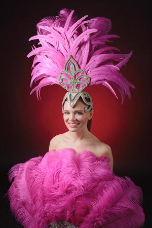 Beautiful girl in carnival costume with rhinestones and pink feathers. Beautiful professional make-up, perfect headdress. 写真素材