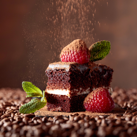 Closeup of chocolate cake with raspberry and mint on a brown bacground.
