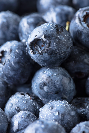 Ripe and juicy fresh picked blueberries closeup. Wet berries , macro shot.