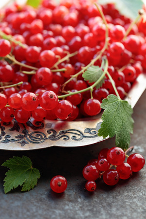 Redcurrants on a metal dish with. Selective focus.