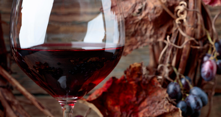 Glass of red wine with grapes and dried vine leaves. 版權商用圖片
