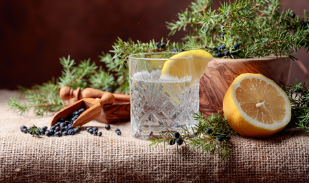 Cocktail gin, tonic with lemon and a branch of juniper with berries. Copy space for your text. Banco de Imagens