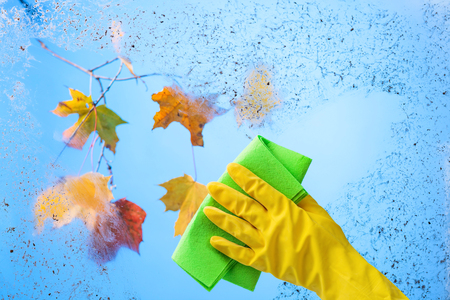 Hand in yellow rubber glove with napkin. Blue sky and colorful maple leaves on a branch behind dirty glass. Conceptual image on the theme of cleanliness and hygiene. Stock Photo