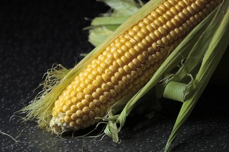 Fresh sweet corn on cobs on iron table. Healthy organic food.