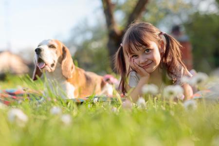 Niña feliz jugando con perro en el jardín. Niña de cuatro años en un día soleado de verano con un Beagle en un césped con margaritas.