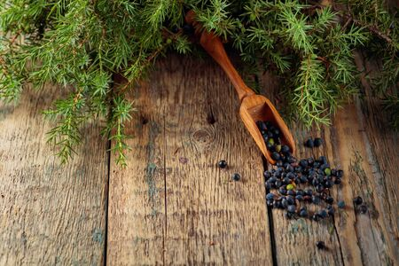 Wooden spoon with seeds of juniper. Juniper branch with berries on a wooden background. Stok Fotoğraf