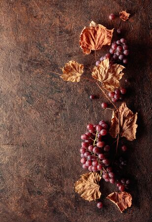 Ripe red grapes and dried up vine leaves. Old copper background. Copy space, top view.