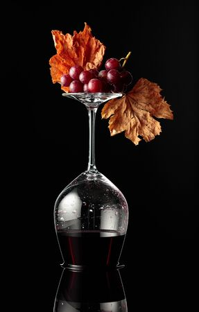 Inverted wine glass with red wine on a black reflective background. Wine with grapes and dried vine leaves. Concept of winemaking.
