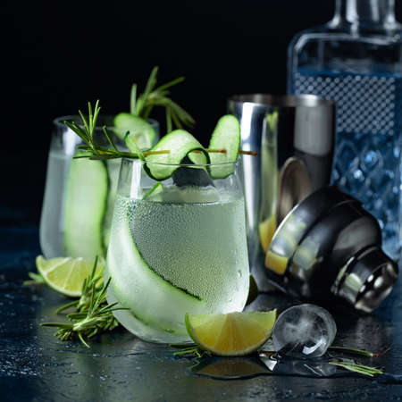 Gin tonic with rosemary, lime and cucumber in frosted glass. Cocktail on a dark blue background. 免版税图像