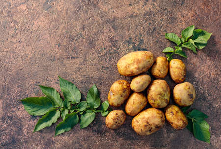 Raw  potato with green leaves on a brown background. Natural vegetable fresh agriculture food. Copy space, top view.