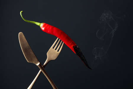 Hot chili red pepper smoking on a fork. Spice concept. Copy space.