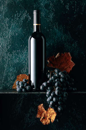 Bottle of red wine and blue grapes with dried up vine leaves on an old dark blue background. Copy space.
