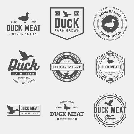 pato: vector conjunto de etiquetas de la carne de pato prima, escudos y elementos de diseño