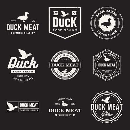 pato: vector conjunto de etiquetas de pato prima de carne, insignias y elementos de diseño con texturas grunge Vectores