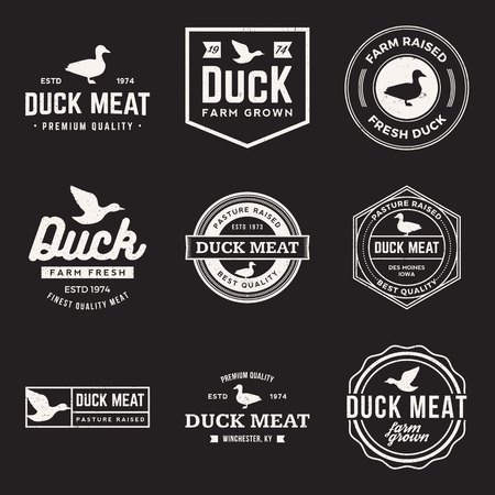 poultry farm: vector set of premium duck meat labels, badges and design elements with grunge textures Illustration