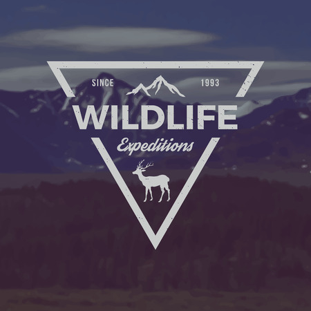 expeditions: vector wildlife expeditions emblem. outdoor activity symbol with grunge texture on mountain landscape background Illustration