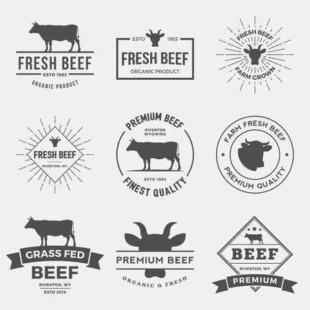 Wektor zestaw etykiet premii wołowej, odznaki i elementów konstrukcyjnych.