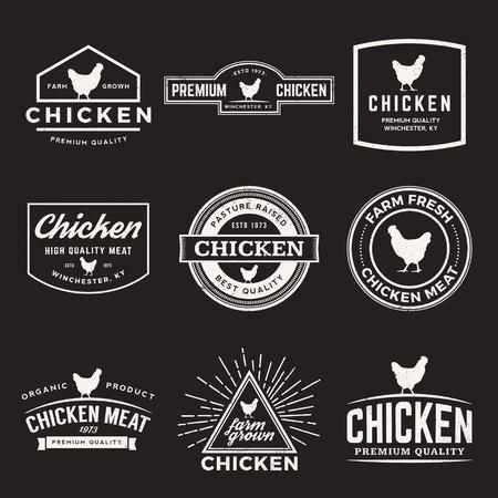 pollo: vector conjunto de etiquetas de la carne de pollo de alta calidad, insignias y elementos de diseño con texturas grunge