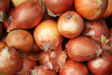 Ripe onions for sale at a market