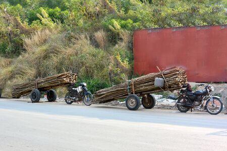 I bracconieri della foresta trasportano legname in città in moto, Cambogia Archivio Fotografico