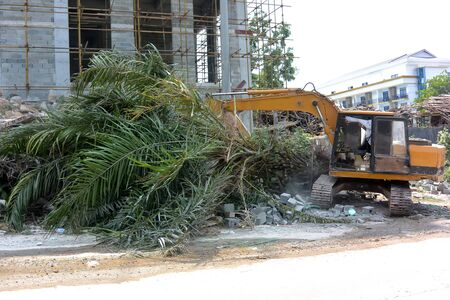 Yellow excavator destroys a living palm tree in Sihanoukville, Cambodia 写真素材