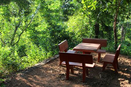 2 Concrete benches and a table in the jungle
