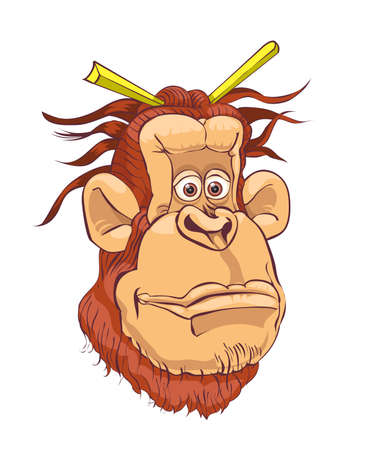 arboreal: Illustration of an orangutan on a white background.vector
