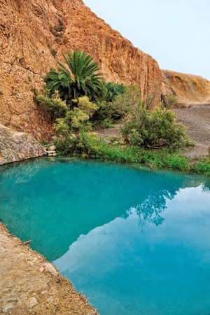 Little pond in Chebika oasis at border of Sahara, Tunisia, Africa photo