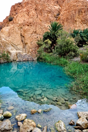 mountain oasis: Mountain oasis Chebika at border of Sahara, Tunisia, Africa