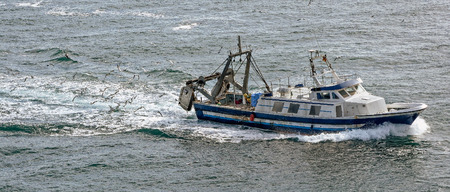 commercial fishing: Commercial fishing trawler boat on the mediterranean sea surrounded by gulls