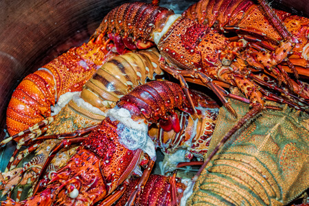 lobster pot: Close-up view to boiled lobsters in a pan.