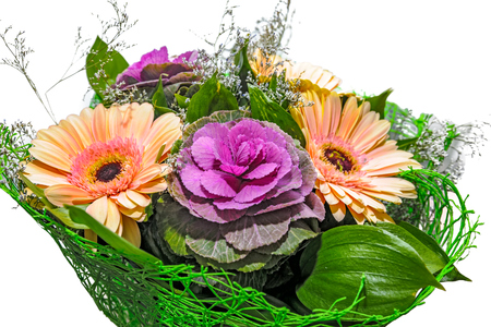 gerbera daisy: Close-up view to bouquet of fresh flowers with a gerbera daisy and ornamental cabbage (Brassica oleracea)