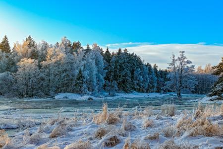 Winter landscape of frost covered Kymi river near Kotka, Finland. Stock Photo
