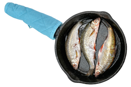 fish tail: Freshly caught freshwater fish roach in a cast-iron frying pan before cooking