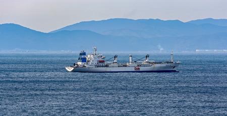 commodities: BUSÁN, COREA DEL SUR - 21 de enero de 2017: Buque de carga refrigerado CIELO TROPICAL que navega a lo largo de la costa costa en Busan, Corea del Sur.