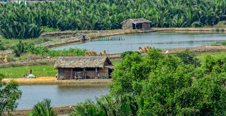 Rural scenery with houses, river, vegetation on Long Tau (Song Long Tau) river banks in suburb of Ho Chi Minh City (Saigon) in Vietnam.