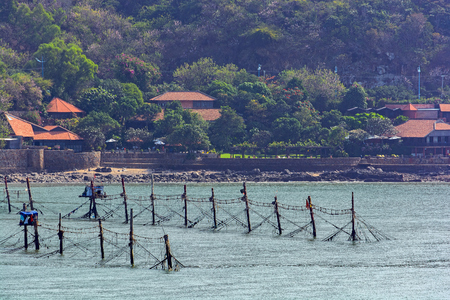 the sunken: Series of parallel rows of evenly spaced coconut logs with line strung between offshore shrimp nets and small stilted shacks for remote crew in front of coastline. Vietnam