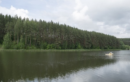 floating on water: Forest on the lake pond in which the floating water bike