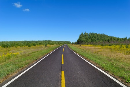 solid line: Country asphalt highway with one line of dashed yellow and two line of solid white road markings