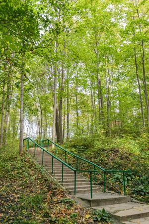 bannister: Concrete stairs with a handrail in a summer green forest. Stock Photo