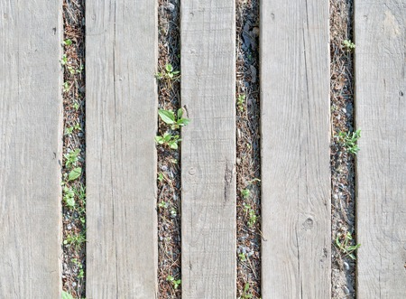 Several gray wooden planks, lying on the ground