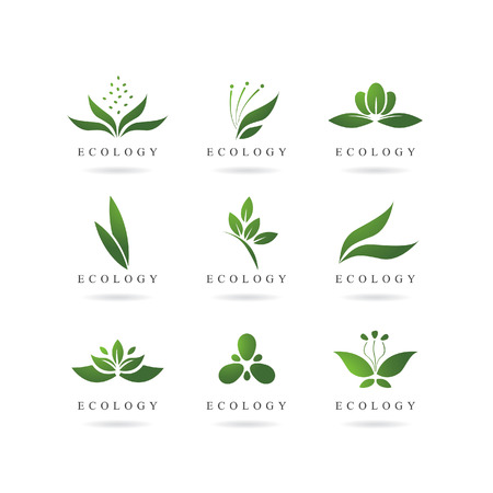 aloe vera plant: eco green logos vector set